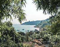 Da Nang's Son Tra peninsular