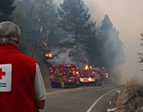 The American Red Cross Responds to Wildfires in TN