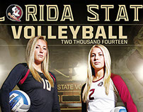 2014 Florida State Volleyball Poster