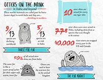 Infographic - Otter Decline