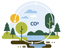 web icon for Forest Stewardship Council
