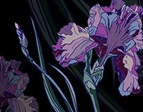 Flower illustration for textile