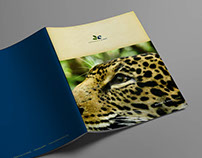 Brochure - Rainforest 2 Reef