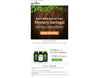 Mystery Savings Email