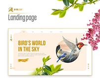 Bird Info | Ui / UX Deisgn Concept