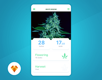 Grow Box - Day94 My UI/UX Free SketchApp Challenge
