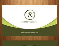 Visiting Card Design for Individual Consultant