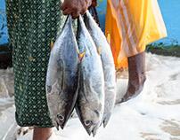 Sri Lanka, Fishermen