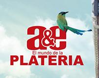 CUADERNO A&E PLATERIA