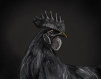 Black is royal - Digital Painting