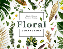 Floral Mockup Collection