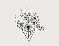 L'alchimiste en herbe