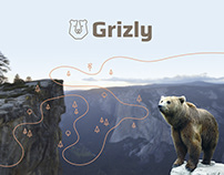 Grizly - A New Visual Identity