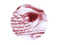 Anatomy of Birdman