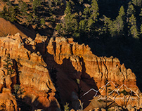 One Beautiful Evening in Bryce Canyon National Park