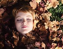 «Autumn variations - opus #1»