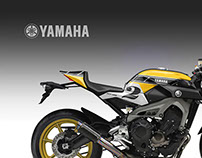 """YAMAHA MT-09 FASTER SONS """"Kenny"""" """"Ago"""" """"Vale"""""""