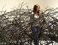 Nest, Instalación (Dark Matter,2016)