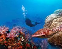 Guam Scuba Diving