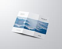 Letter Size Trifold Mockup / 3D Visualization