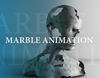 Marble animation