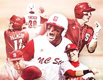 NC State Baseball GIF