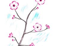 Sakura - Japanese cherryblossom