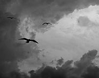 grief on sky