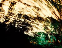 speedforest