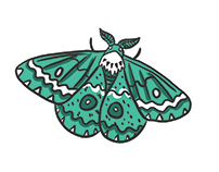 Moths! My Business cards