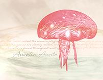Aurelia Aurita (Moon Jellyfish)