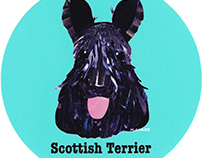 031 | Scottish Terrier