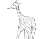 Sketched Giraffe