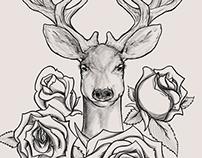 My Deer Friend.