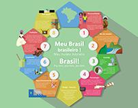 Infográfico brasileiro.