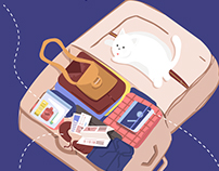 Holiday Packing