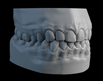 Teeth sculpt