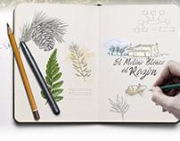 Imagen de marca y desarrollo web Alojamiento rural