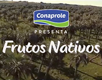 Frutos Nativos - Helados Conaprole