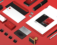 Ducere Branding and Website