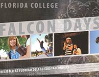 Falcon Days Postcard