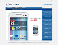 Information Architecture Study for Netline Chile