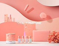 2019 VDL PANTONE COLLECTION