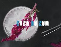 Baba Au Rum Website Design & Development