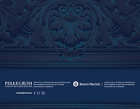 Pellegrini FCI - Redesign - Global Identity