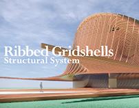 Ribbed gridshells / 2018