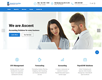 Website for an Accounting Company in USA