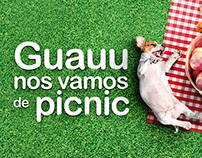 Guauu nos vamos de picnic