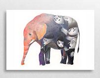 A sad elephant
