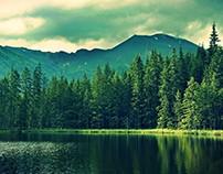 Capa e Avatar de Facebook do Programa Ambientação